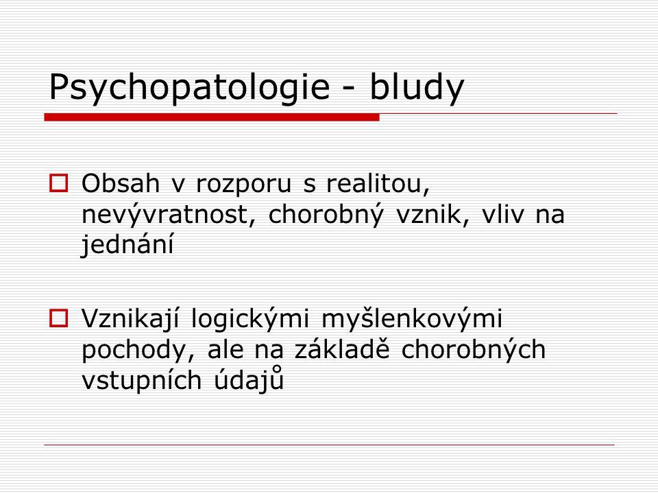 Psychopatologie - bludy