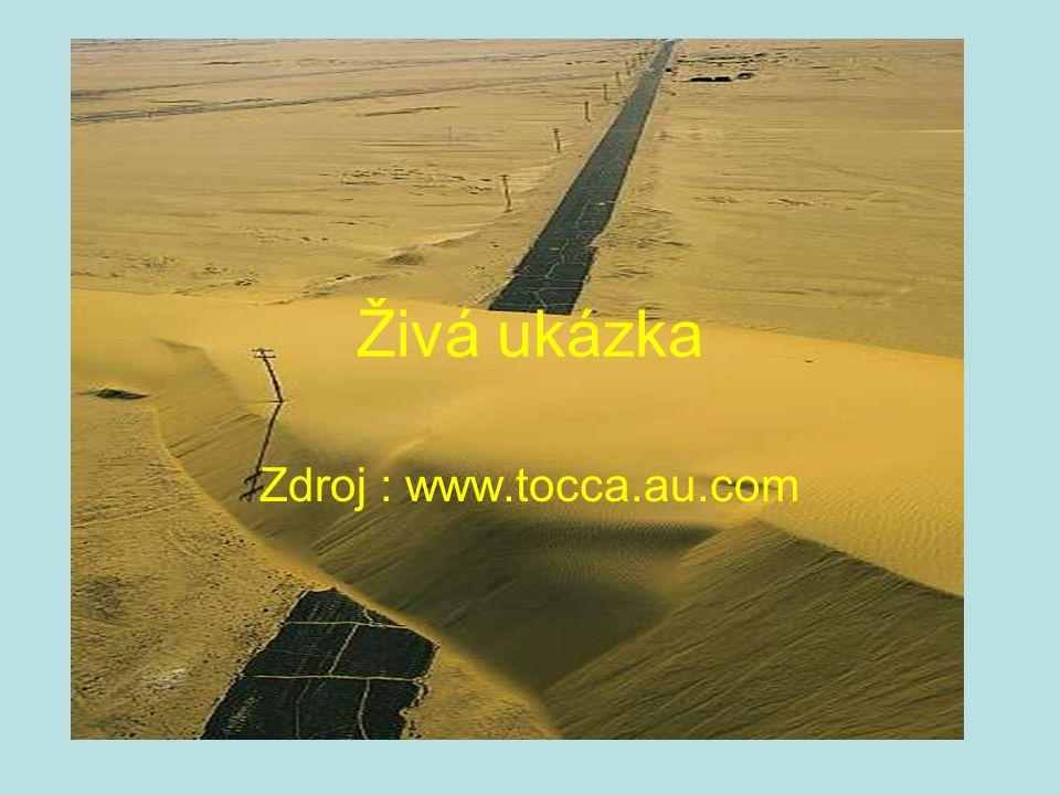 Živá ukázka Zdroj : www.tocca.au.com