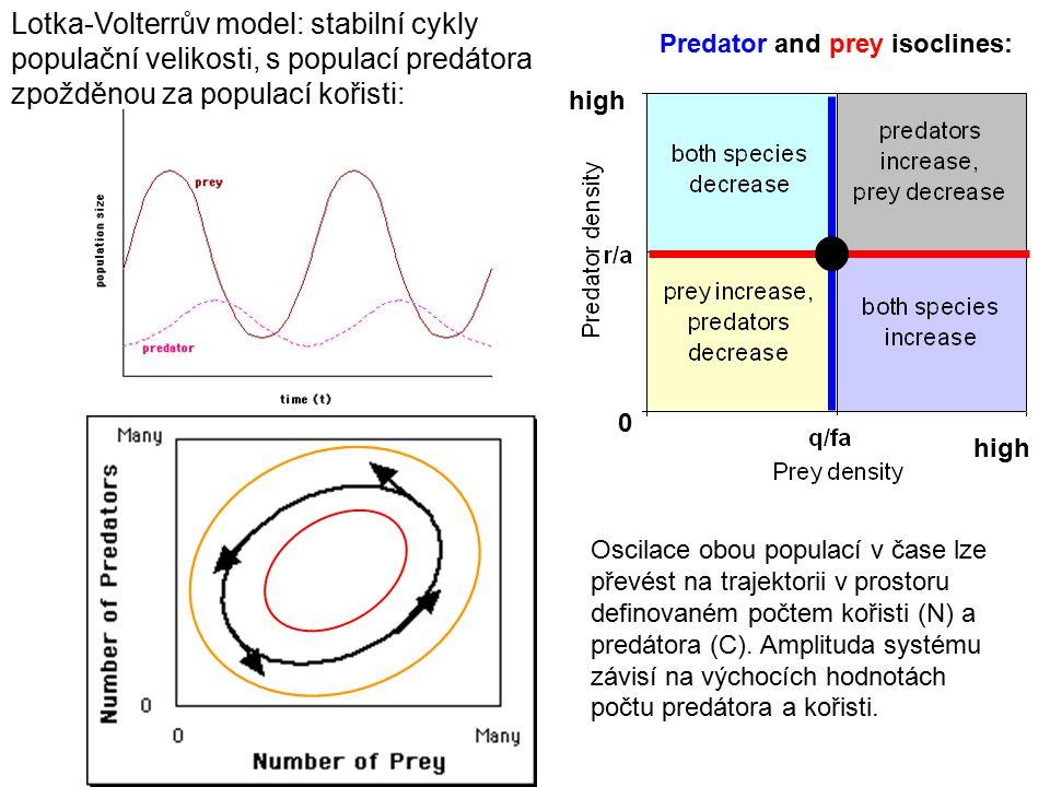 Lotka-Volterrův model: stabilní cykly populační velikosti, s populací predátora zpožděnou za populací kořisti: