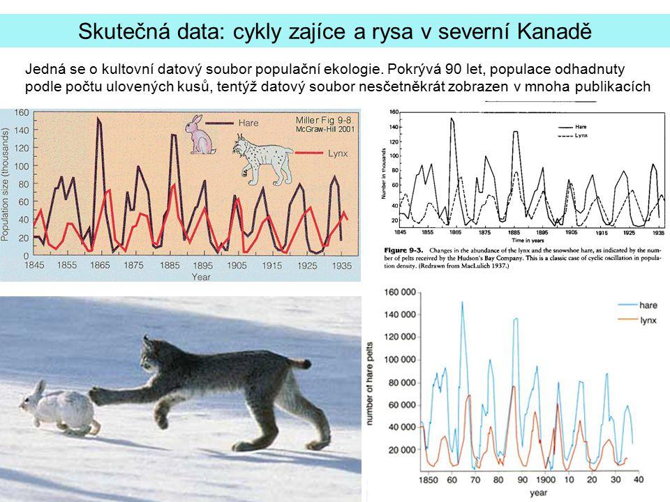 Skutečná data: cykly zajíce a rysa v severní Kanadě