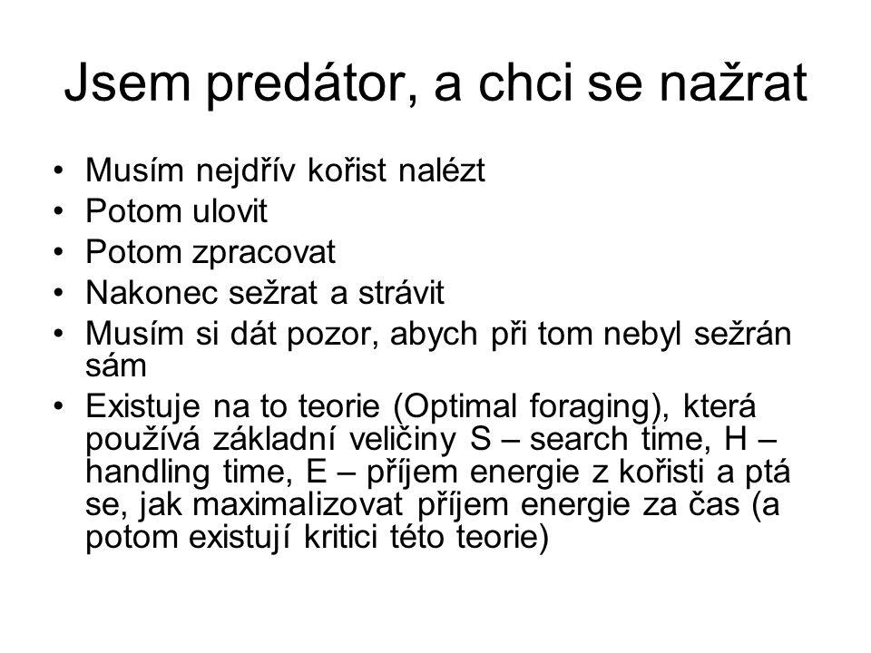 Jsem predátor, a chci se nažrat