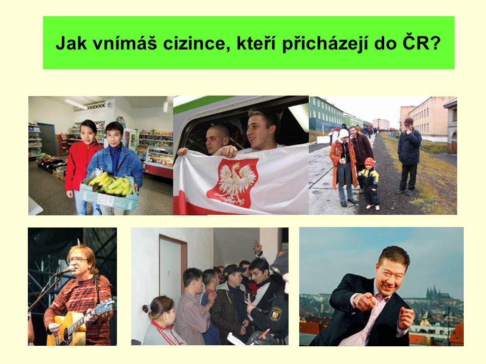 Jak vnímáš cizince, kteří přicházejí do ČR