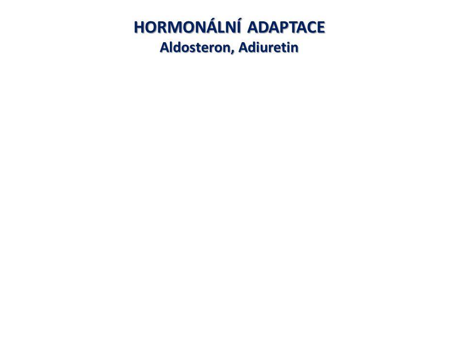 HORMONÁLNÍ ADAPTACE Aldosteron, Adiuretin