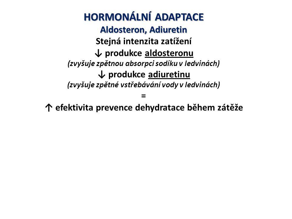 HORMONÁLNÍ ADAPTACE Aldosteron, Adiuretin Stejná intenzita zatížení
