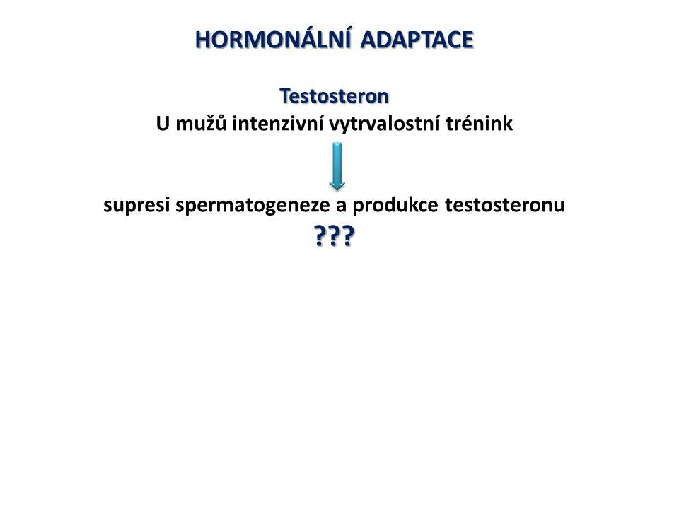 HORMONÁLNÍ ADAPTACE Testosteron
