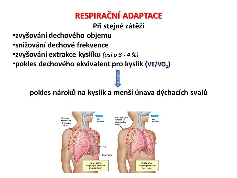 pokles nároků na kyslík a menší únava dýchacích svalů