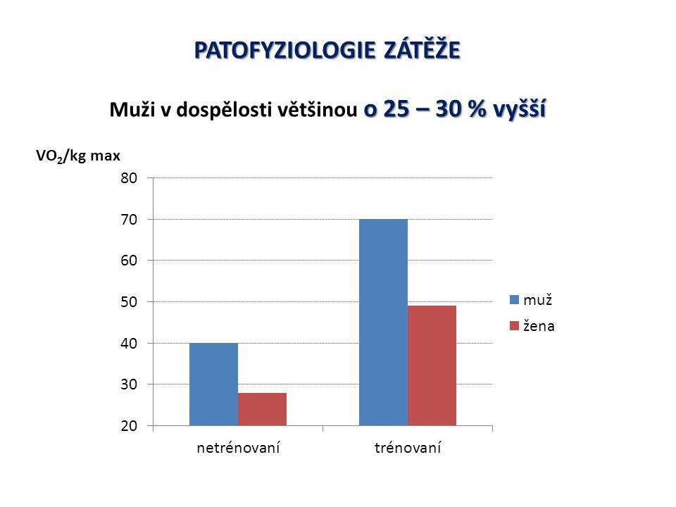 PATOFYZIOLOGIE ZÁTĚŽE Muži v dospělosti většinou o 25 – 30 % vyšší