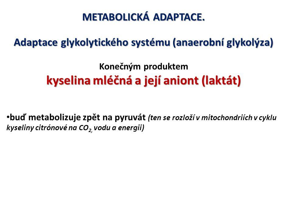 kyselina mléčná a její aniont (laktát)