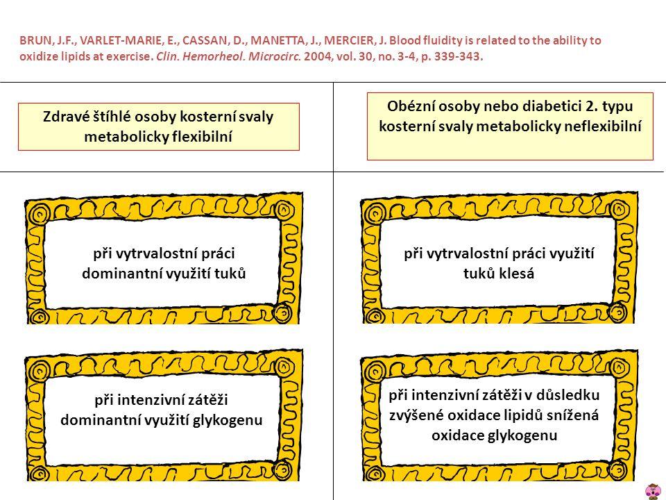 Zdravé štíhlé osoby kosterní svaly metabolicky flexibilní