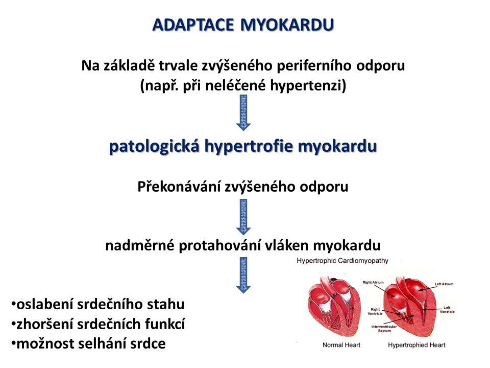 ADAPTACE MYOKARDU patologická hypertrofie myokardu