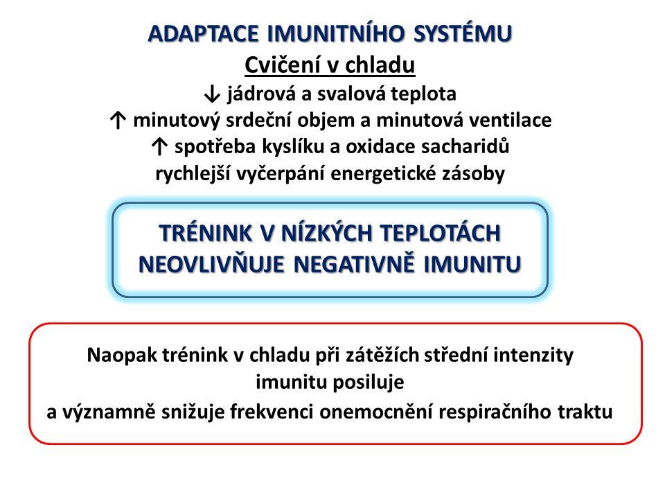 ADAPTACE IMUNITNÍHO SYSTÉMU Cvičení v chladu