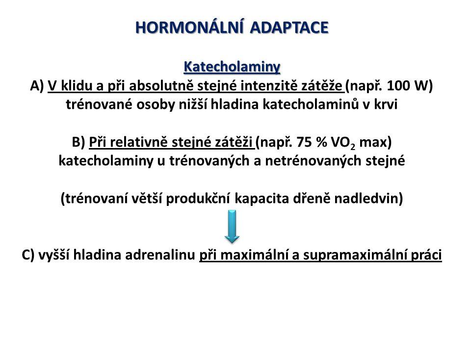 HORMONÁLNÍ ADAPTACE Katecholaminy