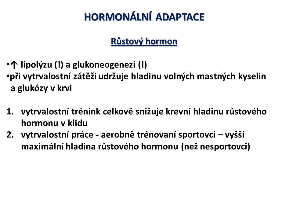 HORMONÁLNÍ ADAPTACE Růstový hormon ↑ lipolýzu (!) a glukoneogenezi (!)