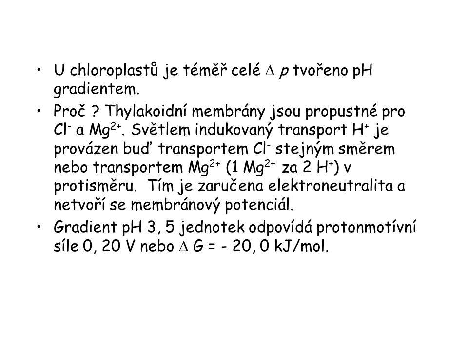 U chloroplastů je téměř celé D p tvořeno pH gradientem.