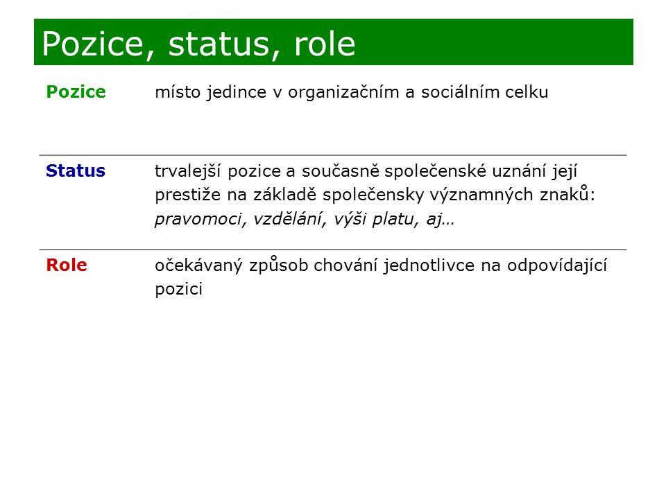 Pozice, status, role Pozice