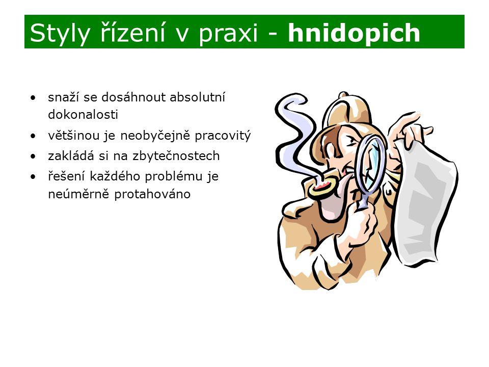 Styly řízení v praxi - hnidopich