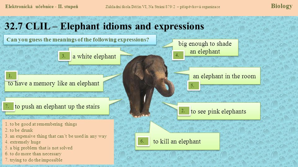 32.7 CLIL – Elephant idioms and expressions