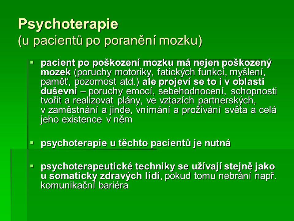 Psychoterapie (u pacientů po poranění mozku)