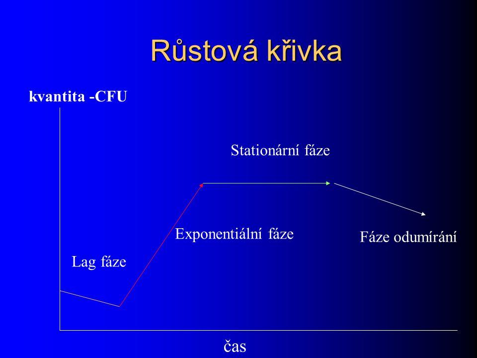 Růstová křivka čas kvantita -CFU Stationární fáze Exponentiální fáze