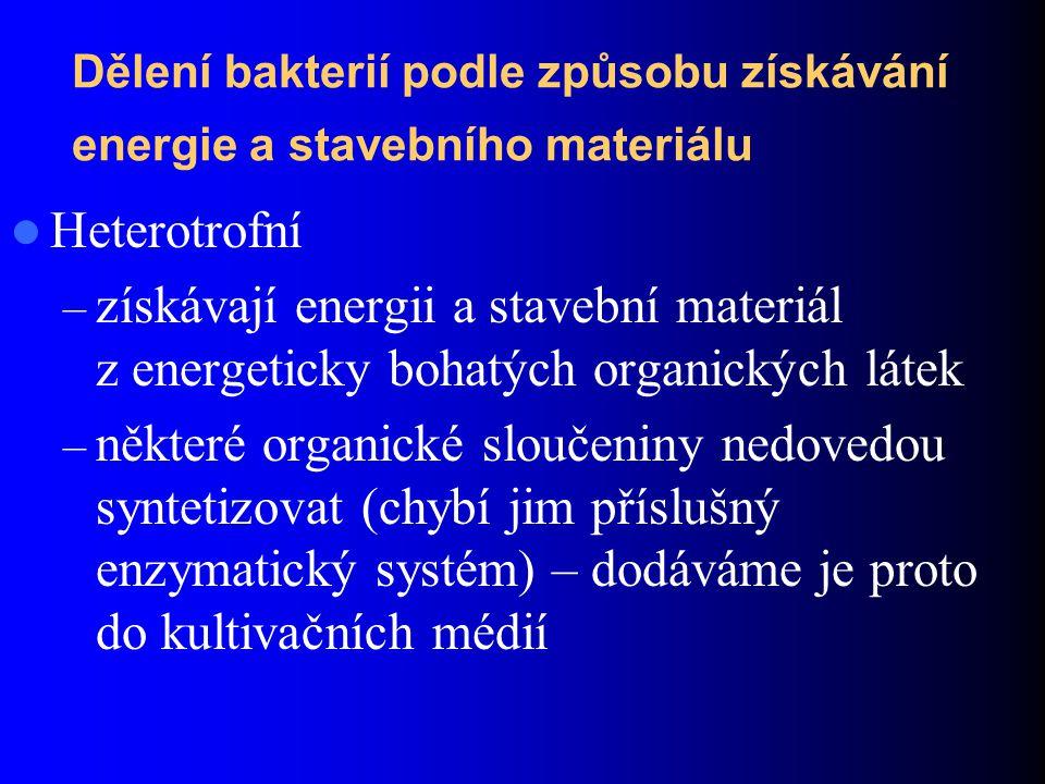 Dělení bakterií podle způsobu získávání energie a stavebního materiálu