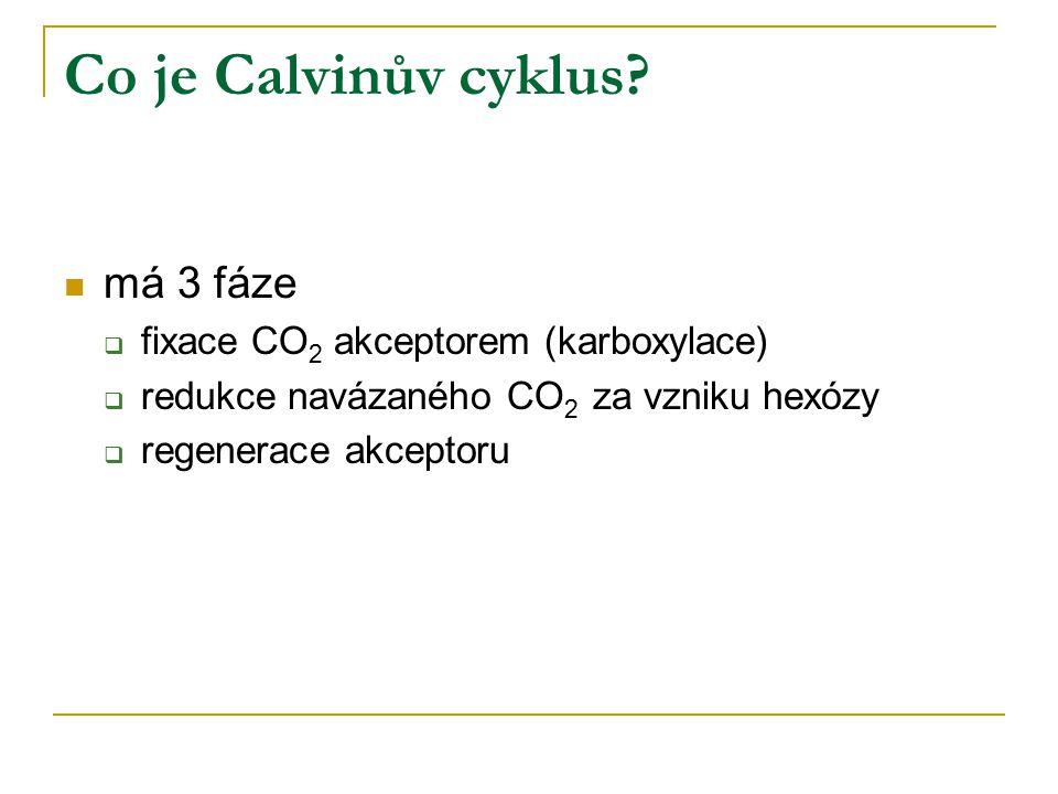 Co je Calvinův cyklus má 3 fáze fixace CO2 akceptorem (karboxylace)