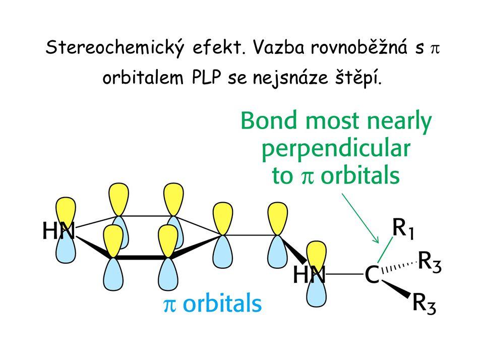 Stereochemický efekt. Vazba rovnoběžná s p orbitalem PLP se nejsnáze štěpí.