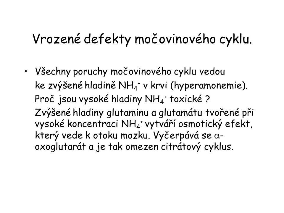Vrozené defekty močovinového cyklu.