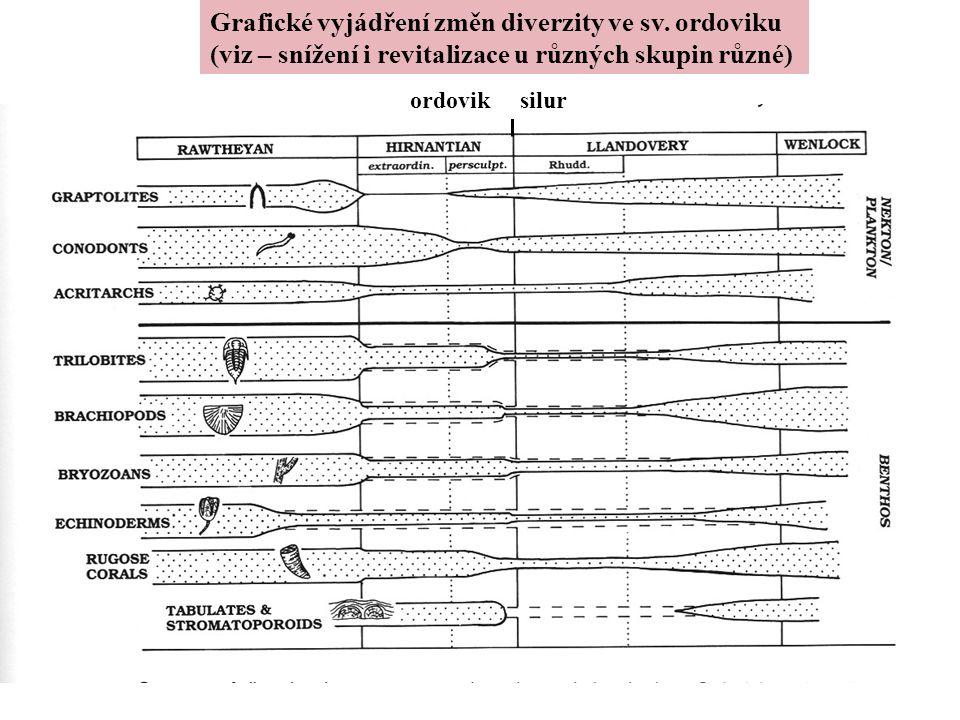 Grafické vyjádření změn diverzity ve sv. ordoviku