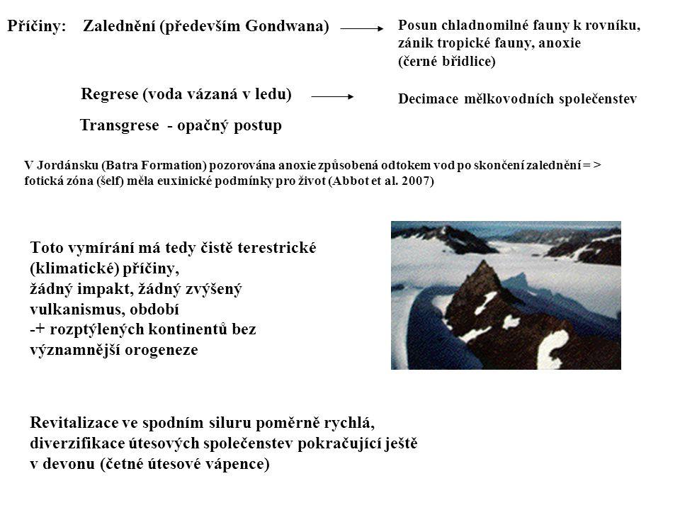 Příčiny: Zalednění (především Gondwana)