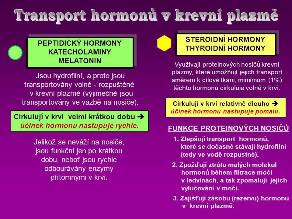 Transport hormonů v krevní plazmě
