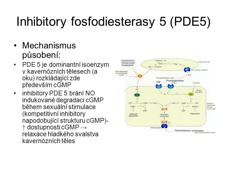 Inhibitory fosfodiesterasy 5 (PDE5)