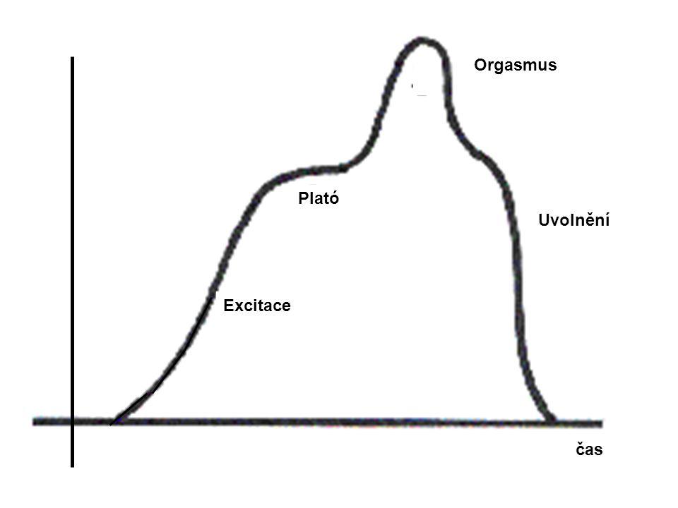 Orgasmus Plató Uvolnění Excitace čas
