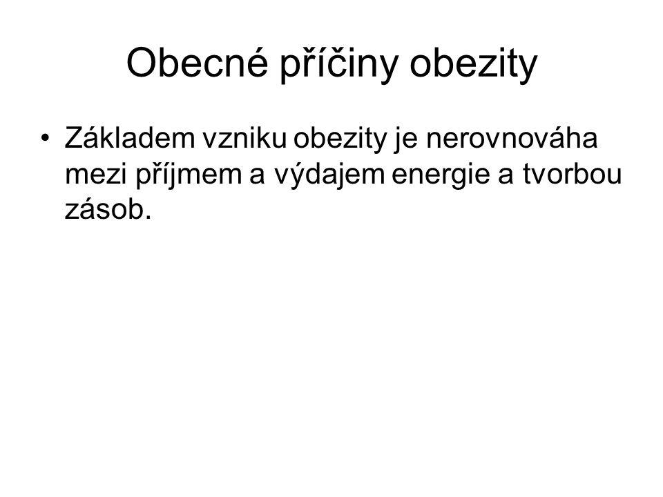 Obecné příčiny obezity