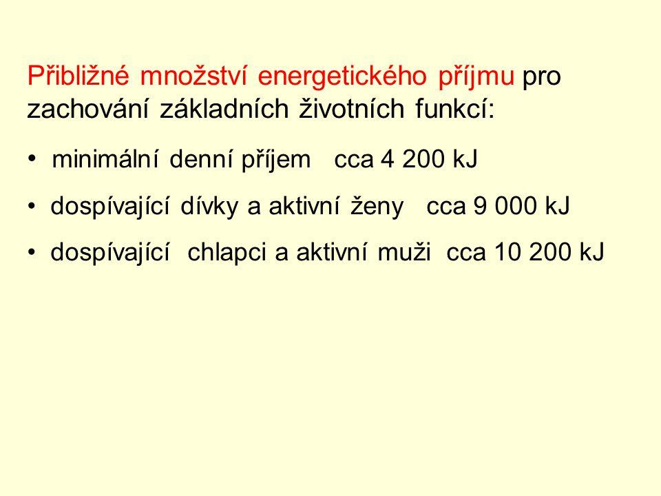 minimální denní příjem cca 4 200 kJ