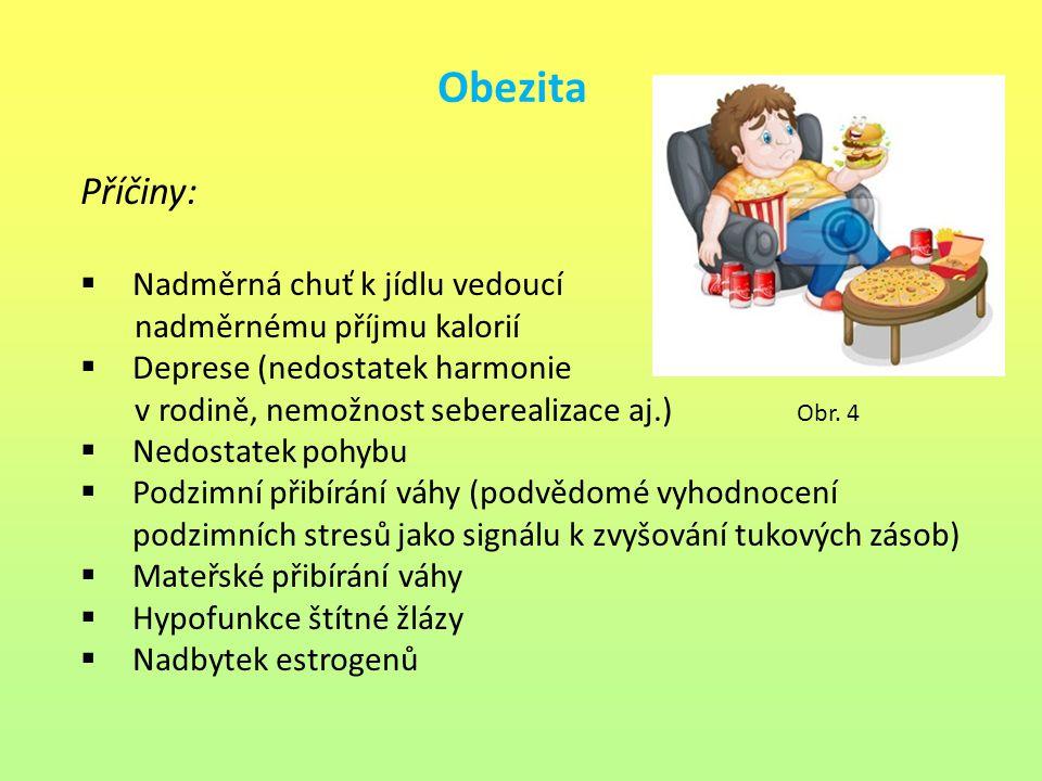 Obezita Příčiny: Nadměrná chuť k jídlu vedoucí