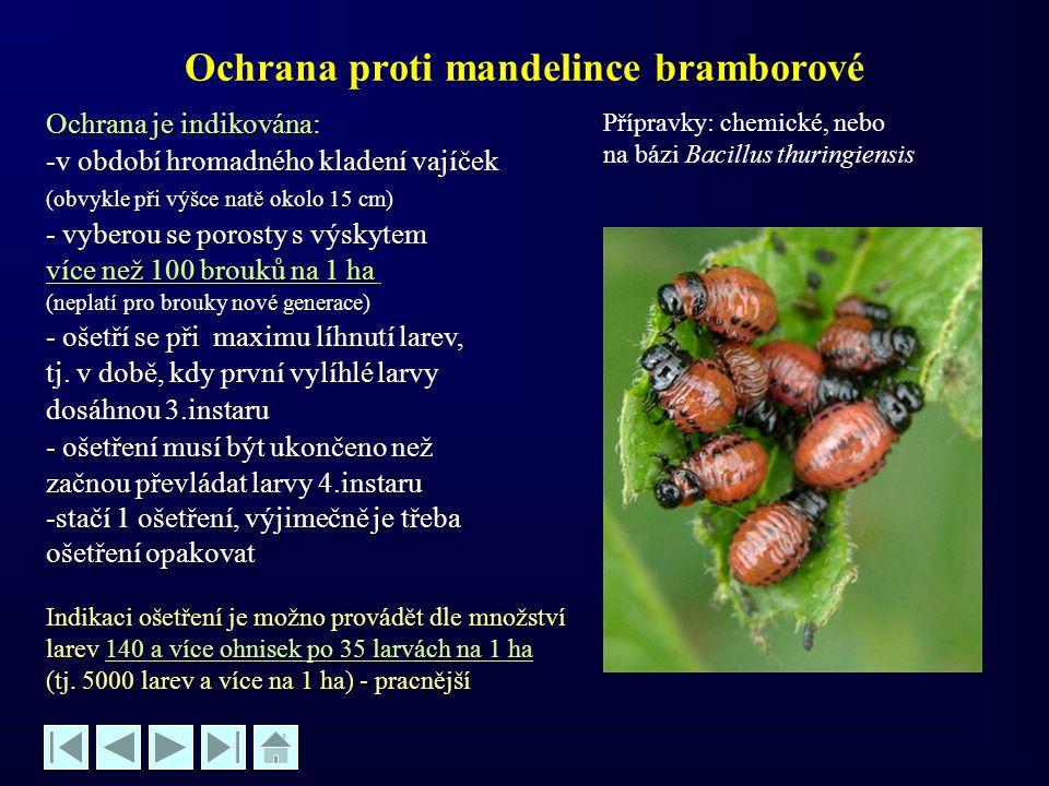 Ochrana proti mandelince bramborové