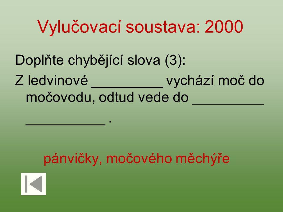 Vylučovací soustava: 2000 Doplňte chybějící slova (3):