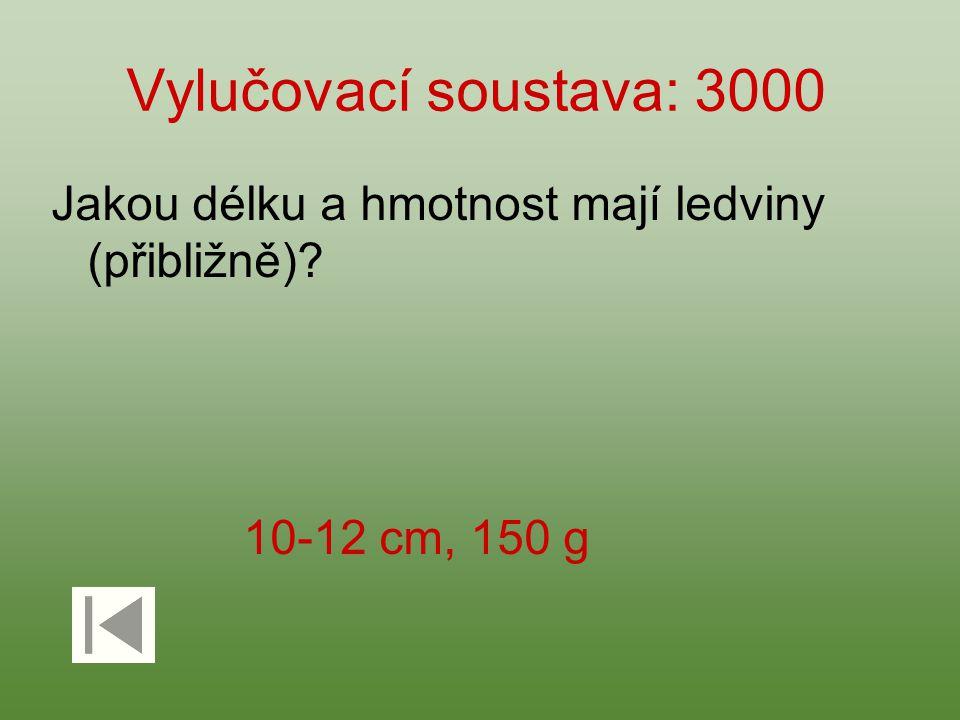Vylučovací soustava: 3000 Jakou délku a hmotnost mají ledviny (přibližně) 10-12 cm, 150 g