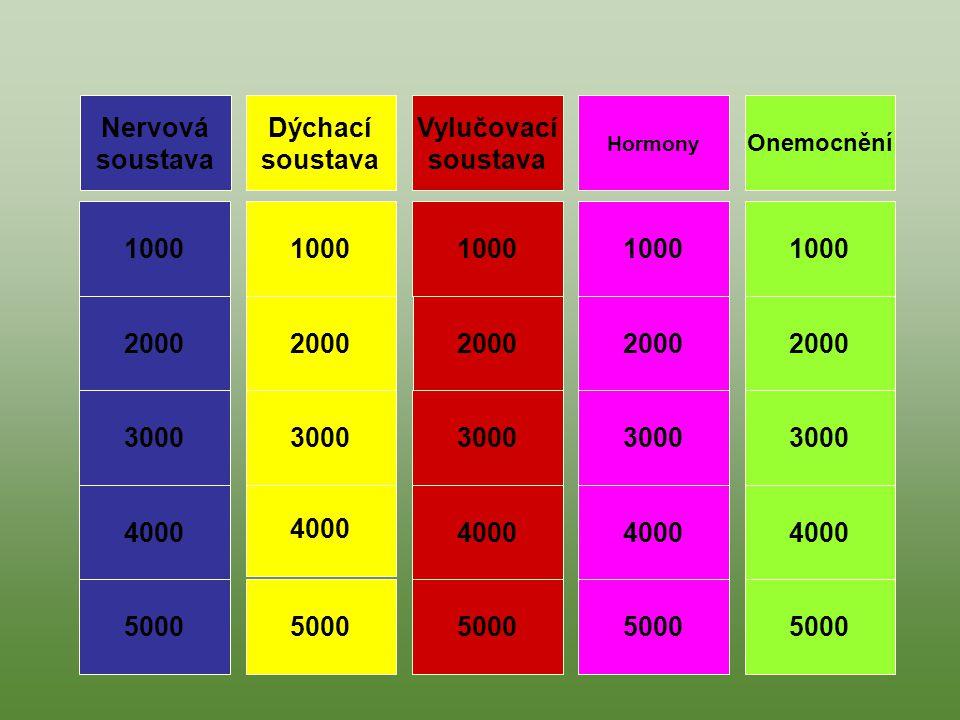 Nervová soustava Dýchací soustava Vylučovací soustava 1000 1000 1000
