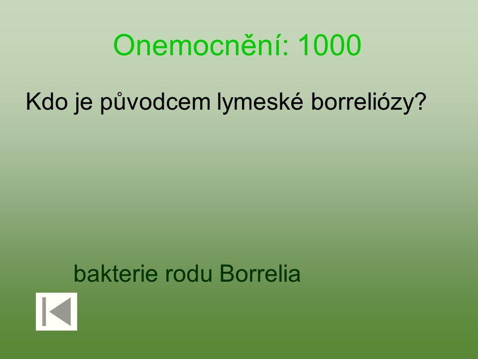 Onemocnění: 1000 Kdo je původcem lymeské borreliózy