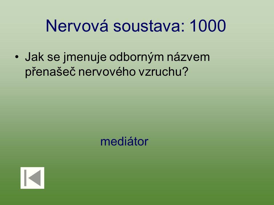 Nervová soustava: 1000 Jak se jmenuje odborným názvem přenašeč nervového vzruchu mediátor