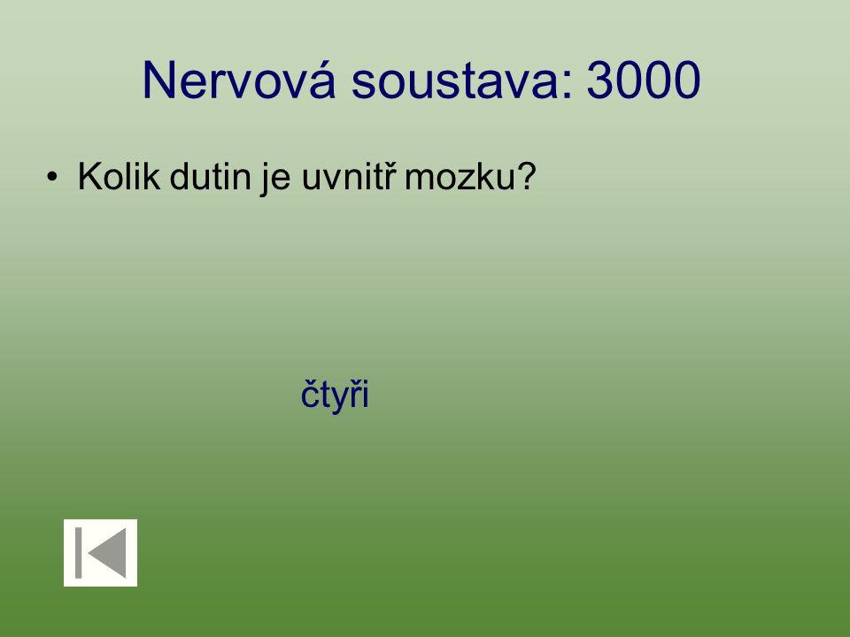 Nervová soustava: 3000 Kolik dutin je uvnitř mozku čtyři