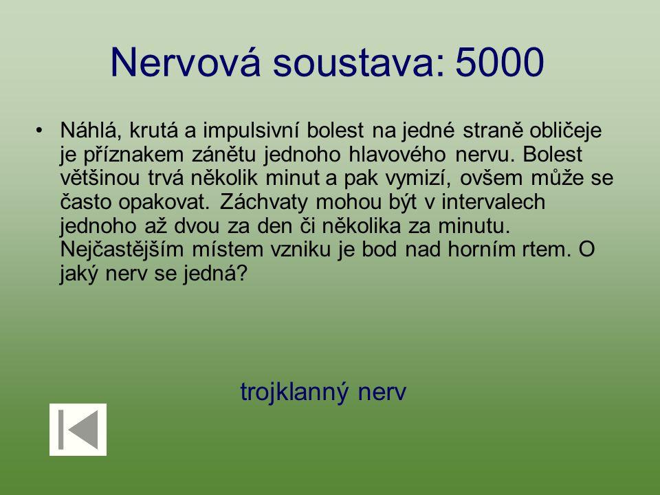 Nervová soustava: 5000