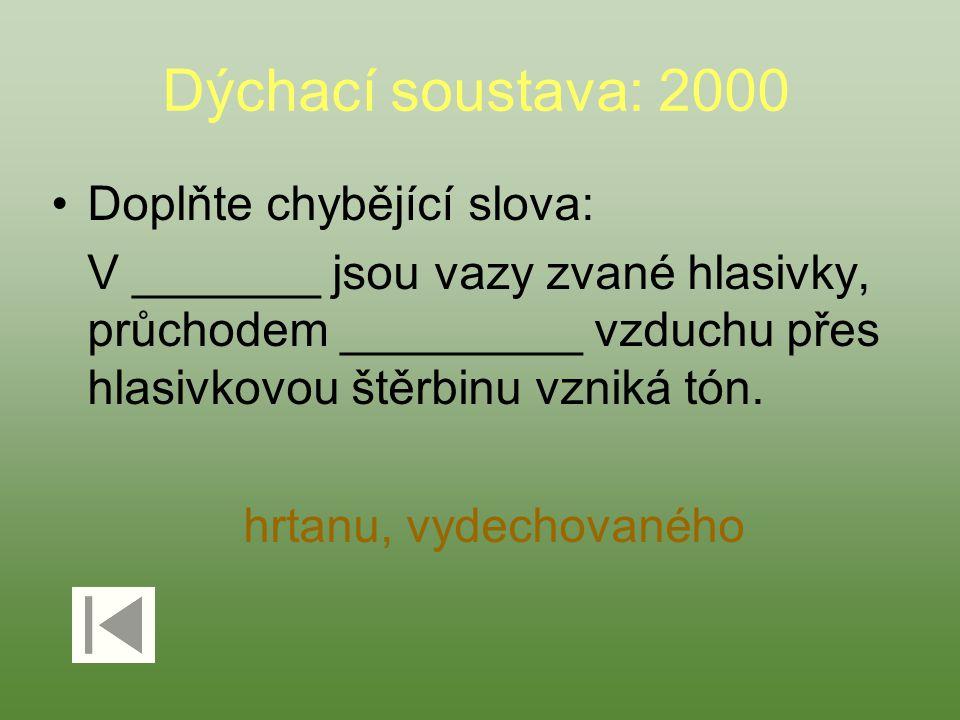 Dýchací soustava: 2000 Doplňte chybějící slova: