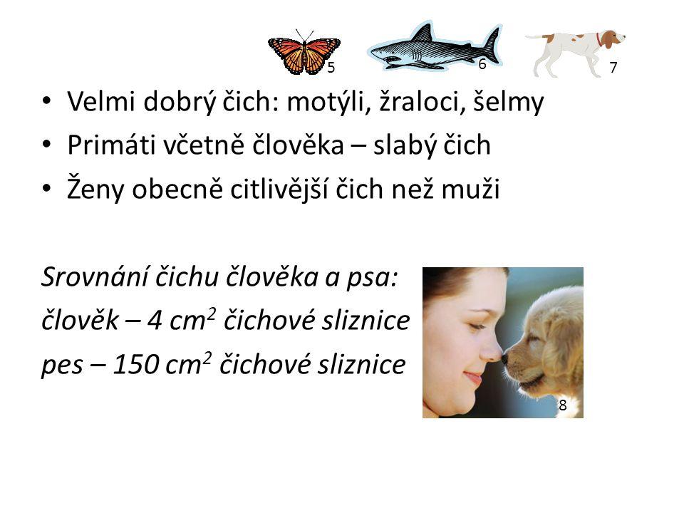 Velmi dobrý čich: motýli, žraloci, šelmy