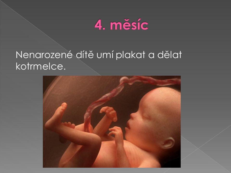 4. měsíc Nenarozené dítě umí plakat a dělat kotrmelce.