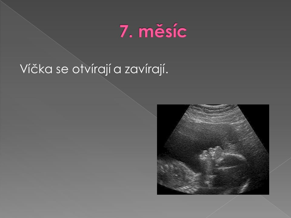 7. měsíc Víčka se otvírají a zavírají.