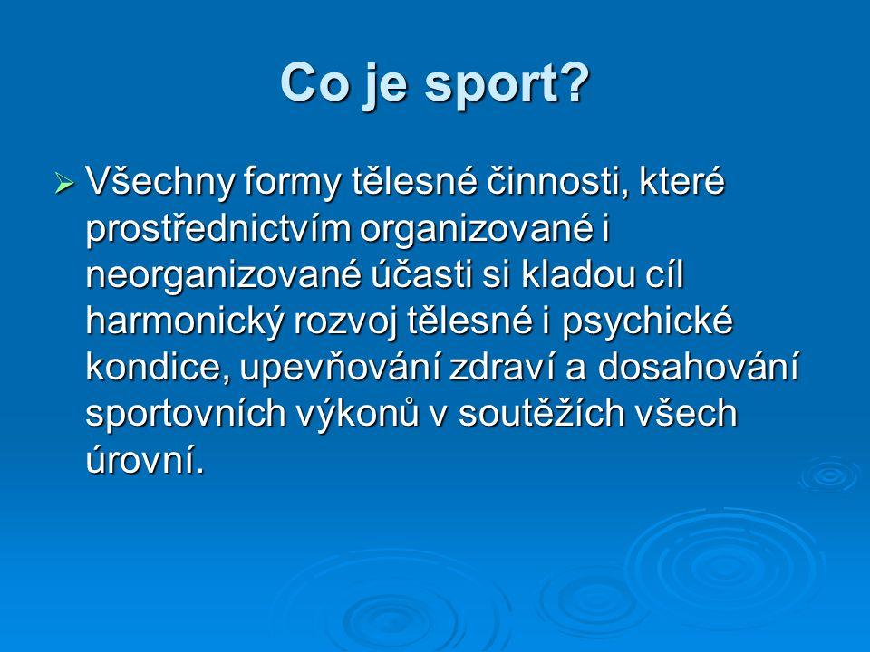 Co je sport