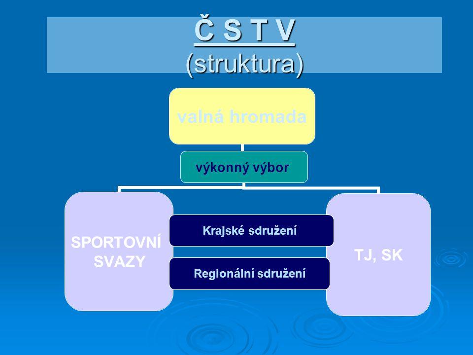 Č S T V (struktura)