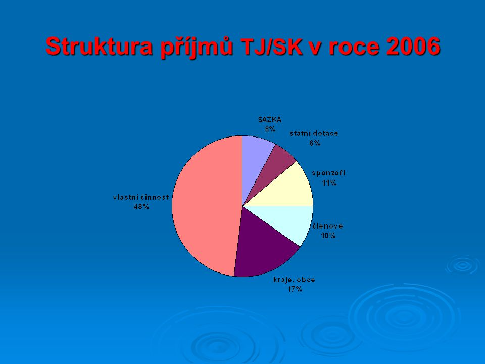 Struktura příjmů TJ/SK v roce 2006